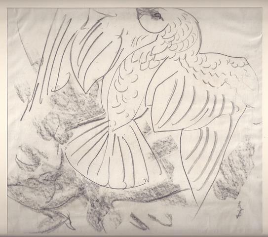 KONIJNENBURG, WILLEM VAN (1868-1943) - Vogel, Studie